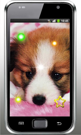 Cool Puppy Pet HD 2015 LWP