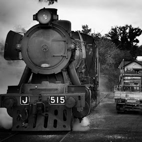 J515 by William Greenfield - Transportation Trains ( transport, train, victorian goldfields rialway, j515, historic, steam,  )