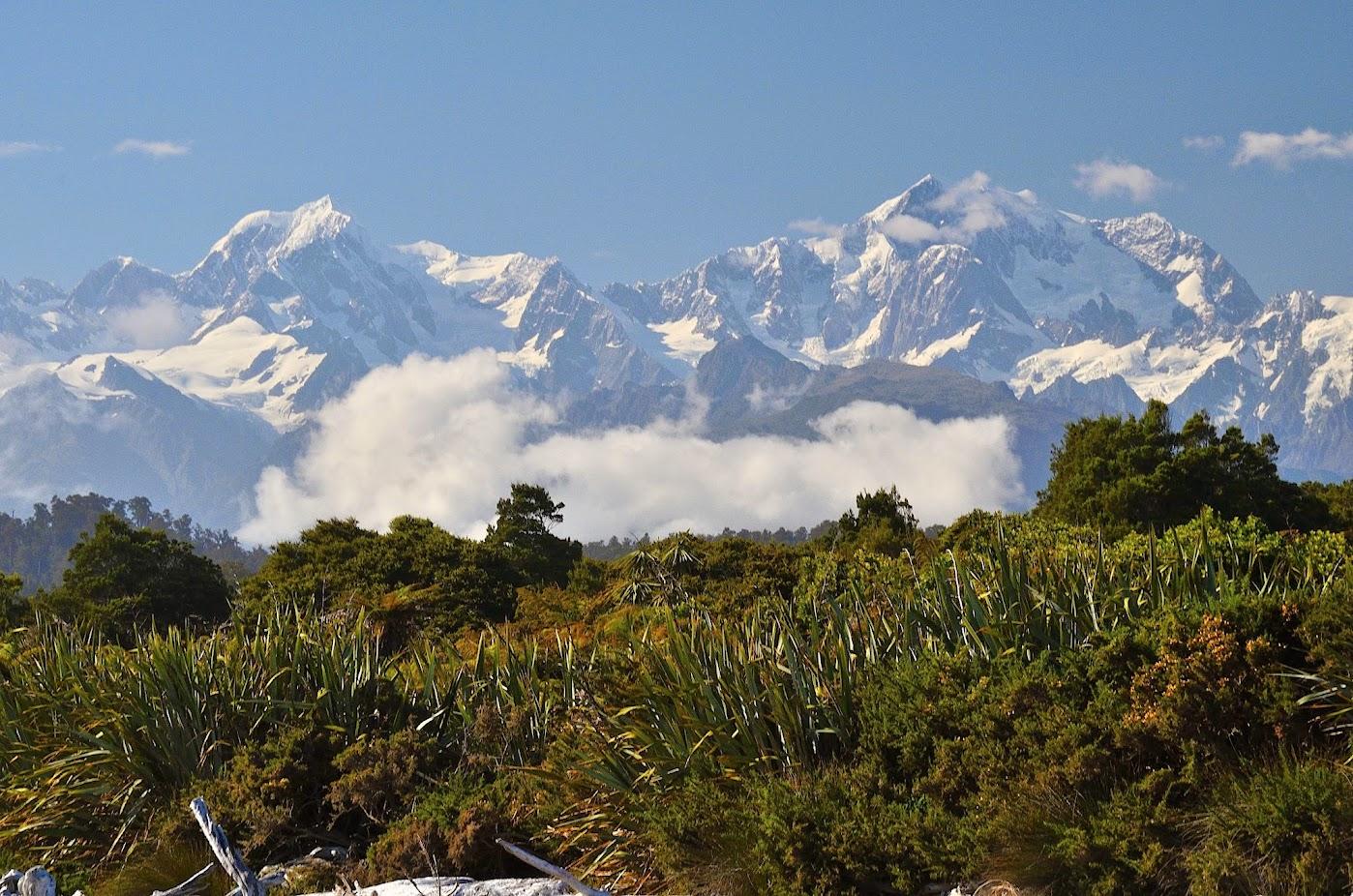 NZ Alpės