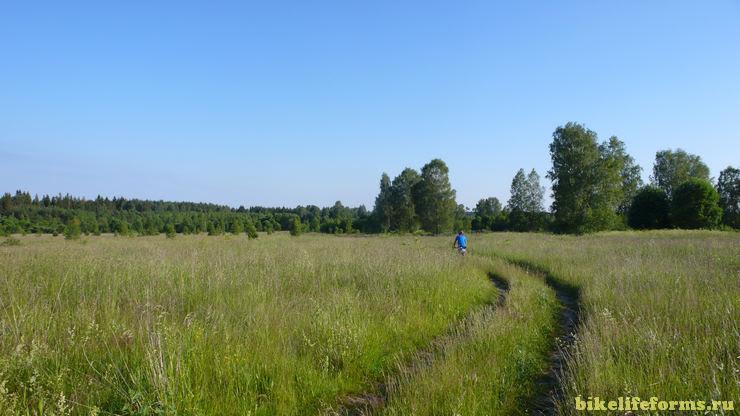 грунтовка в поле