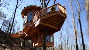 Super Spy Treehouse thumbnail
