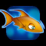 Chichi Reef Warrior