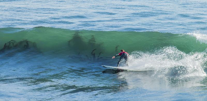 Surfeando tra tentacoli. di GD