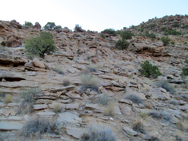 A short constructed section of trail