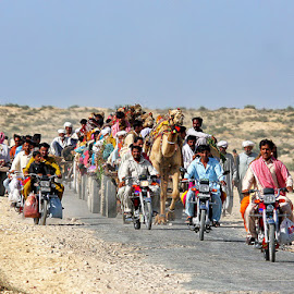 by Abdul Rehman - Transportation Other