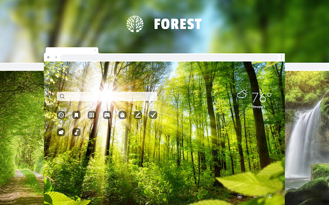 Forest - Rainforest HD Wallpaper Theme