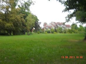 Photo: 19 VIII 2013 roku - pobliski park