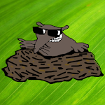 Mole-Hunt Icon