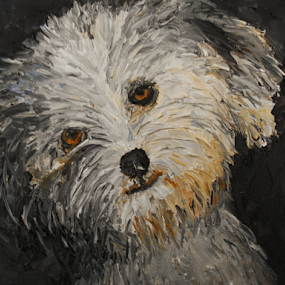 My Lila by Rhonda Lee - Painting All Painting ( pup, white, rokinronda, puppy, lila, cute, llaso apso, dog )