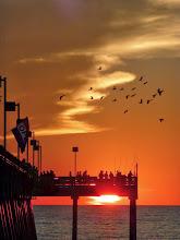 Photo: Sharkies fishing pier