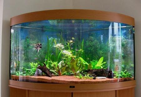 Fish Aquarium Design Ideas - Apps on Google Play