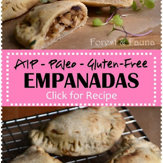 Shredded Chicken Empanadas Recipes.