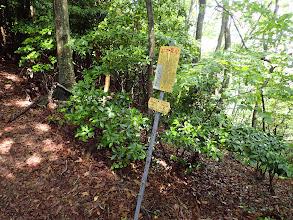 巡視路の標識