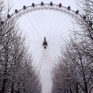 London Eye 10.jpg