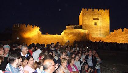Un grupo de turistas durante una visita nocturna a la Alcazaba.