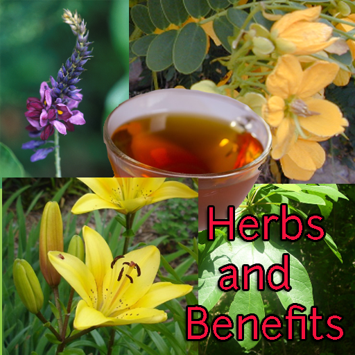 Herbs and Benefits