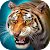 The Tiger file APK for Gaming PC/PS3/PS4 Smart TV