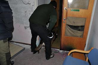 Photo: Balder på vei inn i ganga i søk