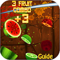 Guide For Fruit Ninja icon