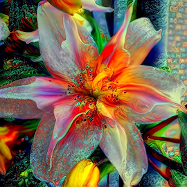 by Cassy 67 - Digital Art Things (  )