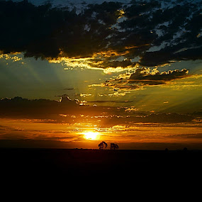 A beautiful sunset  by Ken Hall - Landscapes Sunsets & Sunrises ( ken hall )
