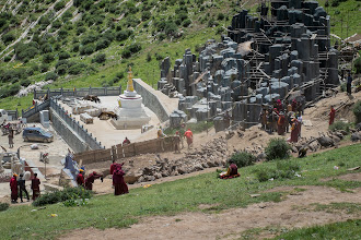 Photo: Vultures getting at the cadavers at the sky burial site about 1 km north of Larung Gar.