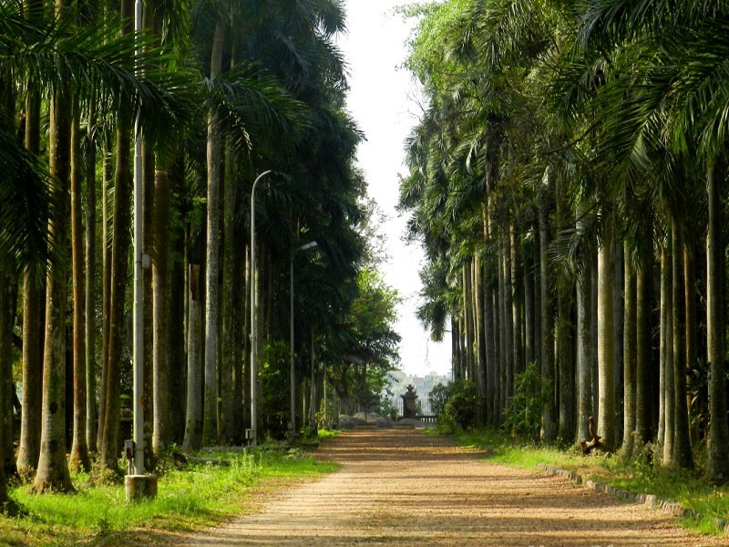 botanical garden romantic places in kolkata