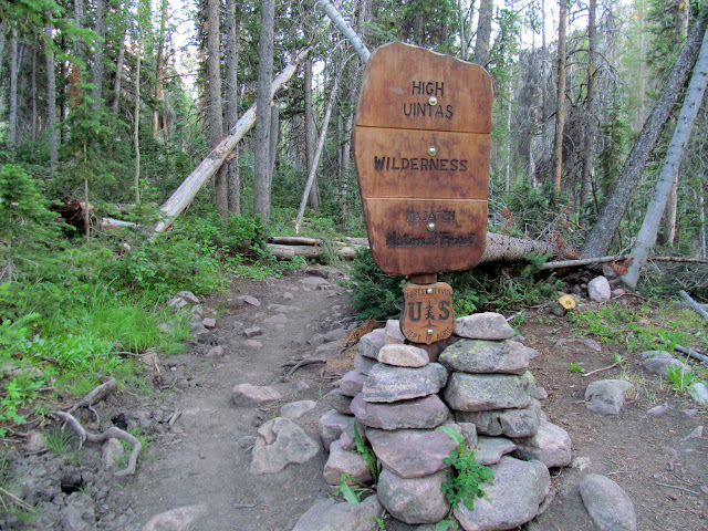 New wilderness sign, about 1,000 feet beyond the wilderness boundary
