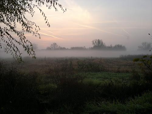 mattina nebbiosa di papuglio