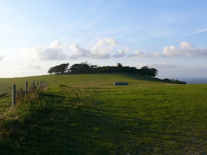 Photo: Chanctonbury Ring, near Brighton