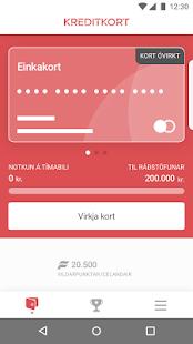 Kreditkort - náhled