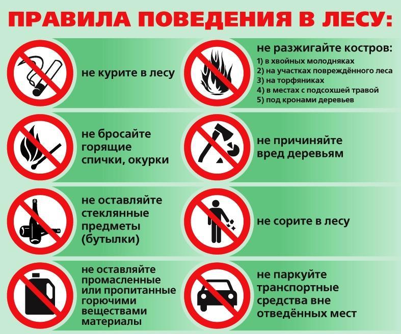 C:\Users\Ульяна\Downloads\2016-08-12_15-45-02.jpg