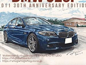 528i M-Sports 2011年 30thアニバーサリーエディションのカスタム事例画像 moemoritetsumeiさんの2020年05月04日12:15の投稿