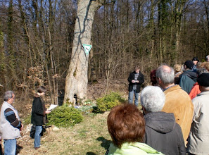 """Photo: An der selben Stelle im März 2009 bei der Wanderung """"Bruder Feuer"""": Der Baum musste gefällt werden."""
