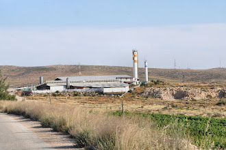 Photo: Cattle farm of the Jewish settlement