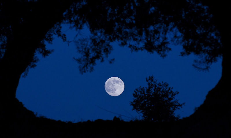 Luna di Libero