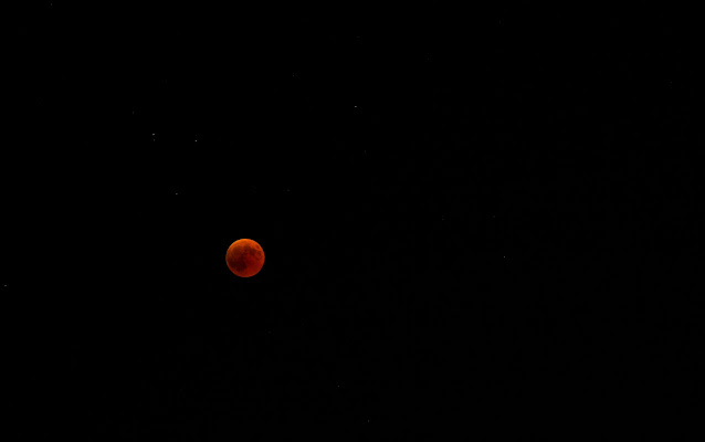 Blood moon di thewhiskeybarphotos