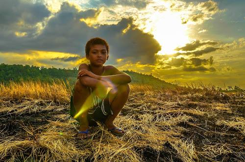 Impassive by Maverick De Castro - Babies & Children Child Portraits ( sun grass kid goldenhour )