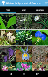 Audubon Wildflowers- screenshot thumbnail