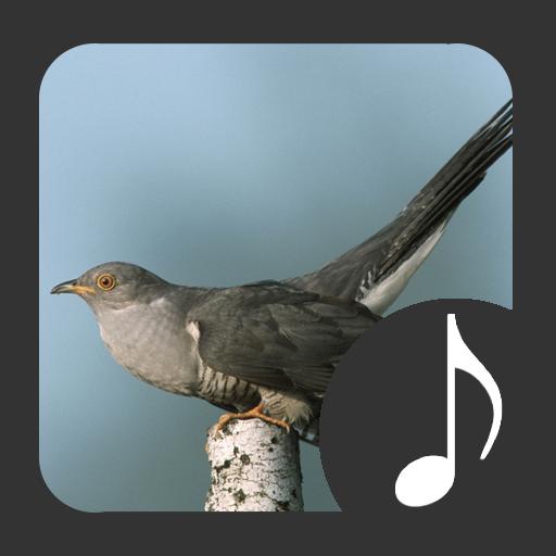 娛樂App|Cuckoo Sounds LOGO-3C達人阿輝的APP