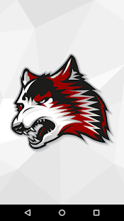 IU East Red Wolves Athletics - náhled