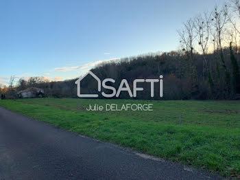 terrain à Bussière-Badil (24)