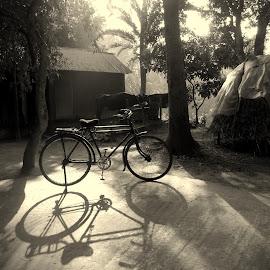 village life  by Asif Mahmud - Transportation Bicycles ( monochrome, village, cow, house, morning, black, shadows )