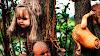 Isla de las muñecas - Leyenda de la terrorífica isla en Xochimilco