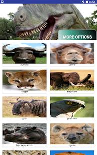 Multi Animal Sounds - náhled