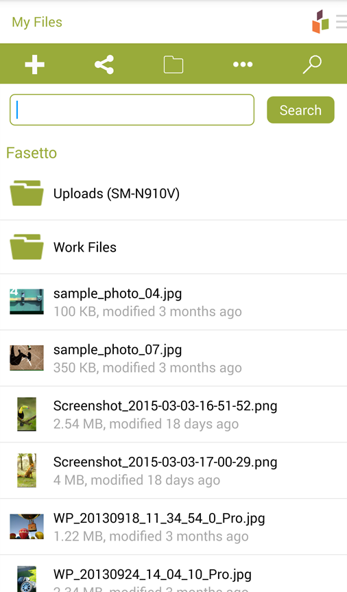 Fasetto- screenshot