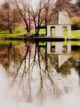 Photo: Pink tulip tree and gazebo reflected in a lake at Cox Arboretum and Gardens MetroPark in Dayton, Ohio.