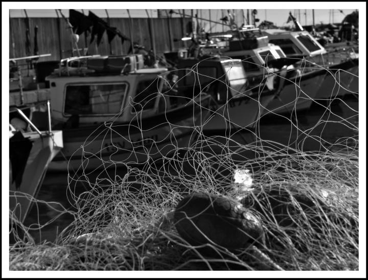 Il porto e la dura vita dei marinai. di Marzia Borgognoni