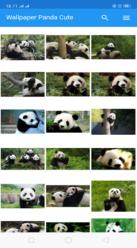 Wallpaper Panda HD screenshot 11