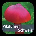 Pilzführer Schweiz icon